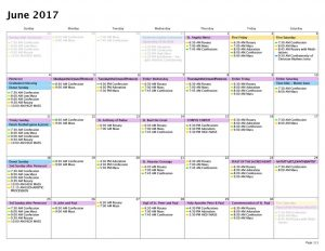 thumbnail of Calendar — Month — 6:1:17 to 6:30:17